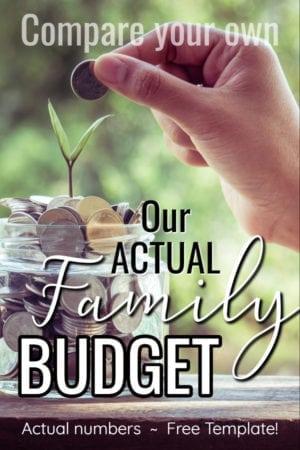 real life budget