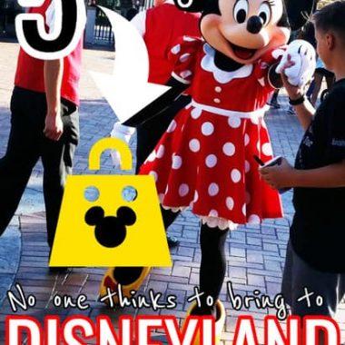5 things to bring to Disneyland