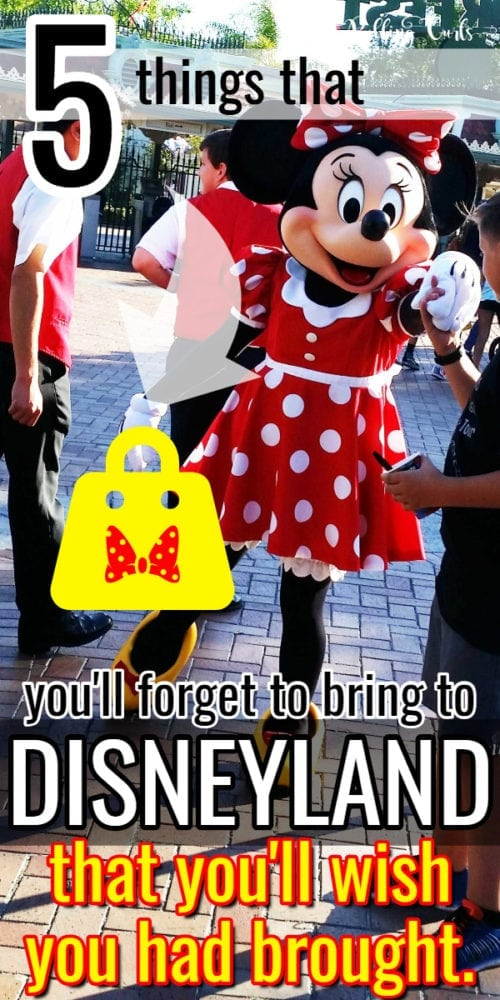 5 things you'll wish you had at Disneyland