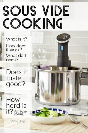 Sous Vide Cooking for Dummies: HOW is it cooking?