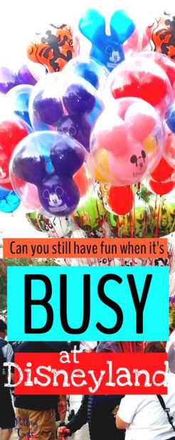 Can you have fun on busy days at Disneyland
