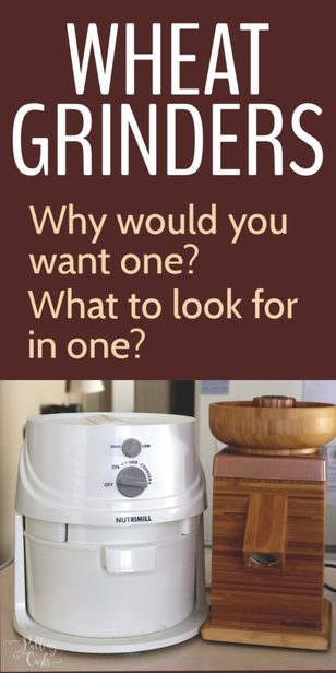 what to look for in a grain mill