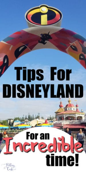 Secret Disneyland Tips!