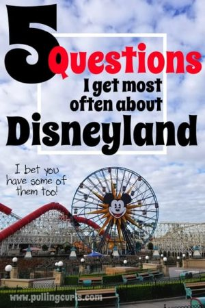 questions I get about Disneyland