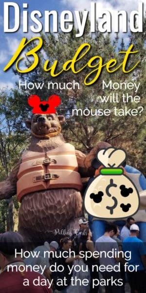 how much spending money for Disneyland?