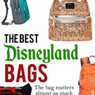 the right disneyland bag for you
