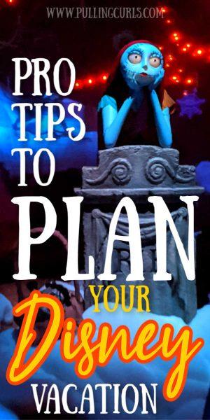 Disneyland plan